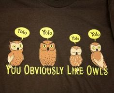 Yolo = You obviously like owls. Yes I do believe that is yolo should stand for ! We Heart It, Owl Shirt, Owl Always Love You, The Funny, Funny Happy, Make Me Smile, Nerdy, Geek Stuff, Just For You