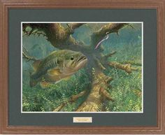 "Pink Ribbontail"""" Largemouth Bass Framed Art Print"