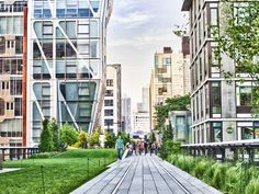 The NYC High Line