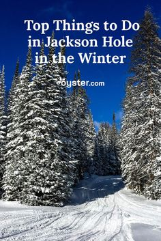 Jackson Hole, Wyoming, is no doubt a magical year-round destination, but there's something particularly alluring about visiting in the winter. With that in mind, we put together a list of the best things to do in Jackson Hole when the temps drop. Grand Teton National Park, Yellowstone National Park, Best States To Visit, Jackson Hole Mountain Resort, Jackson Hole Wyoming, Winter Activities, Winter Travel, Things To Do, Drop