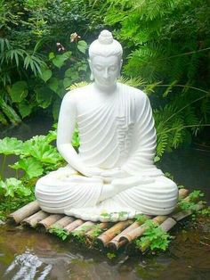 Butterfly Garden Design with buddha statue