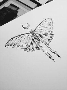 luna moth tattoo - Google zoeken