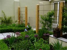 garden screens by garden designer Richard Miers