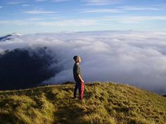 Mount Pulag, Kabayan, Province of Benguet, Philippines. Hike up mountain, camp overnight and watch sunrise next morning. What A Beautiful World, Beautiful Moments, President Of The Philippines, Subic Bay, Philippines Culture, Baguio, Camping Places, Above The Clouds, Environmental Science