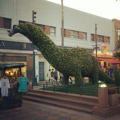 Third Street Promenade - Santa Monica, CA via my Instagram @woelfelryan