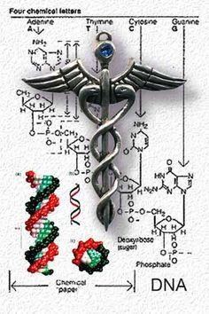 This is known as the Caduceus of Hermes. The spiral effect indicates an expansion of knowledge, and the undulating dance of cosmic forces. The double snakes of the caduceus also represent duality and the unification of polar opposites, as well as displaying balance and integration polarities in order to strike harmony. If you take it a step further, you notice the dual intertwined snakes form a double helix DNA strand; Serpent DNA specifically.
