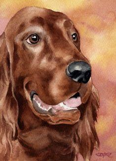 IRISH SETTER Dog Art Print Signed by Artist DJ Rogers