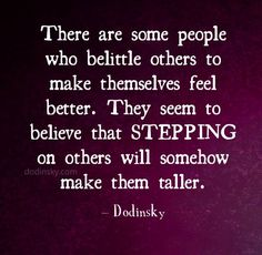 There are some people who belittle others to make themselves feel better - Dodinsky