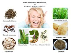 Formula of Natural Herbal Medicine Extraction  For Cure Tinnitus, Hearing Loss and Deafness