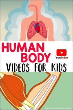 These videos will be used with the human body unit. Students will take a quiz after watching each video. Kid Science, Preschool Science, Elementary Science, Science Lessons, Teaching Science, Science Activities, Science Experiments, Teaching Kids, Science Biology