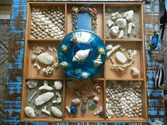 Coleção de conchas em nicho de mesa de centro