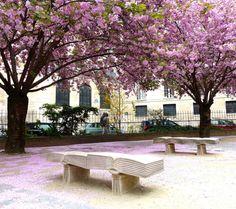 5 Rue de Seine, Paris