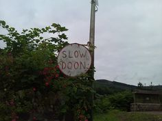 """Meanwhile in Scotland: """"Slow Doon"""". Translation: Slow Down. Funny Road Signs, Meanwhile In, Thinking Day, British Isles, Great Britain, Glasgow, Ireland, In This Moment, Pure Products"""