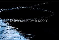 #water Francesco Vieri ph.
