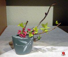 https://www.facebook.com/Ikebana-International-Montreal-852683954845979/ Miniature flower arrangement Welcome Swallows - 2012 Exhibition - Ikebana International of Montreal SC20120421 016