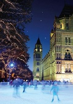 Night Lights - London Ice Skating: Natural History Museum Ice Rink