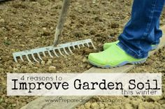 Soil really is the foundation of your garden and if you want to be successful at growing food you'll probably have to spend some time improving it. See 4 reasons to improve garden soil this winter by PreparednessMama Slugs In Garden, Garden Compost, Garden Pests, Vegetable Gardening, Garden Insects, Organic Insecticide, Soil Improvement, Starting A Garden, Clay Soil