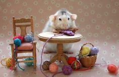 Rosie's first knitting lesson! by Ellen van Deelen