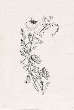 Still can't decide if I want my floral tattoo in colour or black and white...