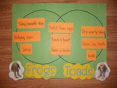 Frog and Toad are Friends!