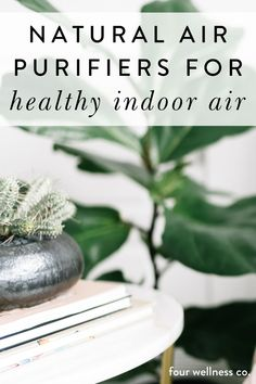 Natural Air Purifiers for Healthy Indoor Air | Wellness Tips | Did you know that Indoor air quality is usually far worse for your health than the air right outside your home? Click for how to improve your indoor air quality by reducing toxins, using safe cleaning products, candles and air fresheners, and doing your best to purchase safer product alternatives. | Healthy Home | Eco-Friendly Living | Four Wellness Co. #airpurifiers #naturalairpurifier #health #wellness #nontoxicliving