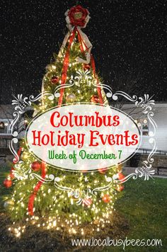 It's beginning to look a lot like Christmas here in Columbus. Last week my family and I enjoyed a few tree lighting ceremonies and other holiday happenings. December 7, Busy Bee, Tree Lighting, Christmas Bulbs, Christmas Ideas, Holidays And Events, Entertaining, Activities, Holiday Decor