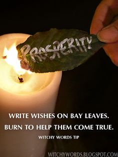 Write wishes on Bay Leaves, burn to help them come true!