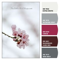 Cherry Blossoms, By The Little Red Shop ~ Chip It! by Sherwin-Williams – Julie A.