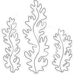 Dibujos para colorear de Algas marinas, Plantillas para