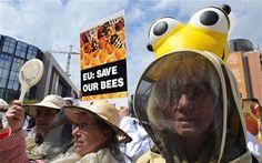 Bayer y Syngenta acaban de demandar a la Comisión Europea pidiendo que revoque la prohibición a los plaguicidas que asesinaron millones de abejas en todo el mundo.
