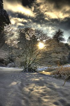 A winter scene- a pleasurable shiver.
