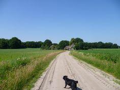 2013-07-07 Aan het einde van de route kom je deze boerderijtjes tegen.
