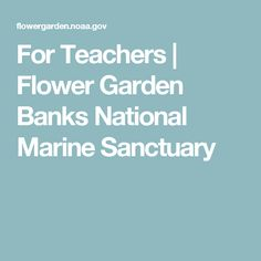 For Teachers | Flower Garden Banks National Marine Sanctuary