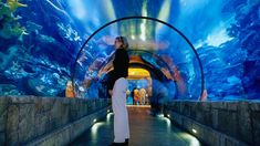 Walk through and Shark Reef exhibit in Mandalay Bay Resort and Casino, Las Vegas...other kid tips