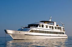 The Integrity was constructed in the US began touring the Galapagos back in 2005. However, it has since been refurbished, in order to keep it in line with other luxury boats currently cruising the Islands.