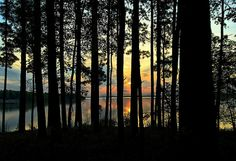 Rend Lake at Dawn