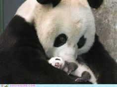 momma and baby!