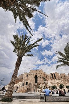Citadelle d'Aleppo - Syrie