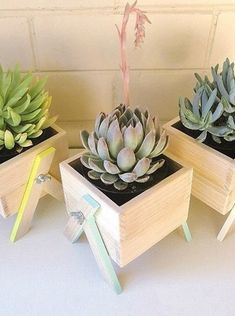 DIY Garden Decorating Ideas on a Budget – Wooden Planter Boxes mini wooden planters Wooden Planter Boxes, Diy Planter Box, Diy Planters, Planter Ideas, Planter Pots, Small Succulents, Succulents Garden, Diy Garden, Garden Ideas
