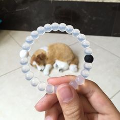 For Sale: Lokai Bracelet  for $7