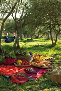 Definitely can't wait to be able to go on picnics with my husband again. They're so cute and romantic :)