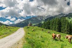 Auffach Wildschönau | Wildschönau Tourismus Skiing, Mountains, Nature, Travel, Vacation Places, Communities Unit, Tourism, Interesting Facts, Ski