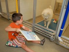 PHOTO: Ryan Huntebrinker reads holiday stories to a Humane Society of Missouri shelter dog during the Deck the Howls event for the Shelter Buddies Reading Program.