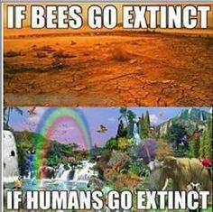 If bees go extinct / if humans go extinct / vegan meme / vegan humor / vegan lifestyle / veganism