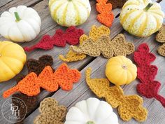Get your crochet on for Fall with this Fall Oak Leaves Free Crochet Pattern! Great for Fall decorating, banners, appliques, and gift decorations! Crochet Leaf Free Pattern, Crochet Leaves, Crochet Fall, Crochet Flowers, Free Crochet, Knitting Patterns, Crochet Patterns, Crochet Appliques, Crochet Ideas