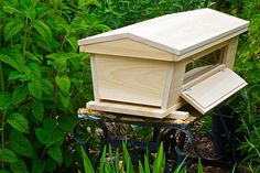 We provide installation, training, troubleshooting, and localized honeybee colonies to beginning beekeepers. We love to help introduce people to the joys of ...