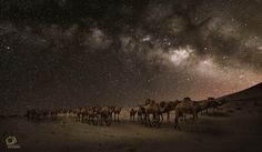 A convoy of the Milky Way - A convoy of the Milky Way - KSA