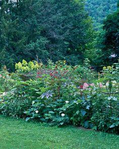 Lavender Moon Herbs In Honeoye Falls, NY | Upstate New York | Pinterest |  Herbs
