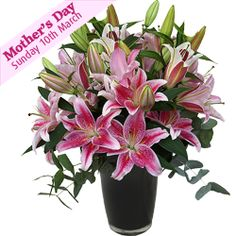 This superb bouquet of sweet scented oriental lilies set among eucalyptus foliage is perfect for any occasion or celebration. £35