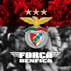 Força Benfica Portugal Soccer, Team Player, My Passion, Football Team, Gabriel, Yup, Hobbies, Logo, City